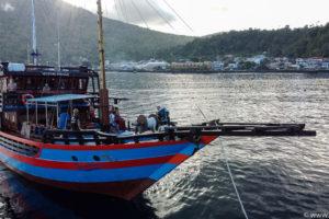 Sulawesi Maerz 2020